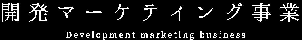 開発マーケティング事業 Development marketing business